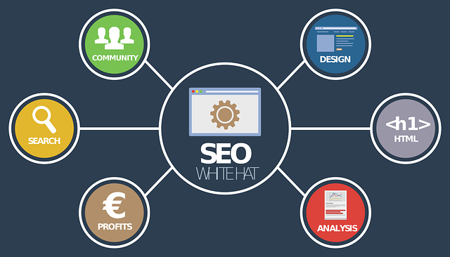 analýza on-line seo